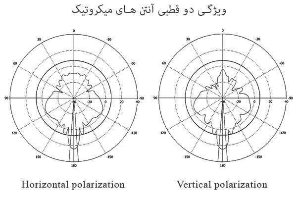 Dual Polarization